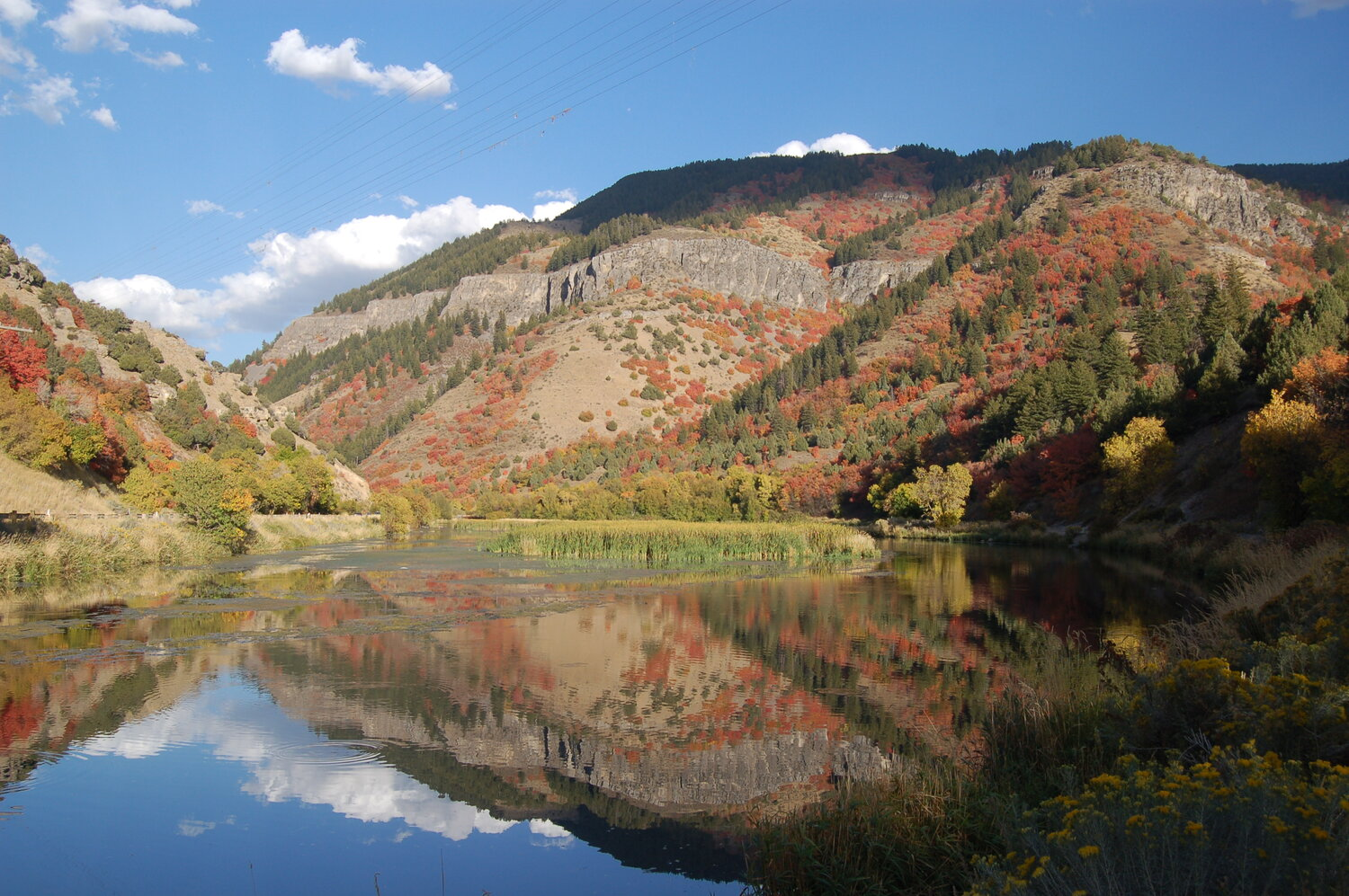 Logan Canyon in the fall